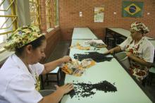 Redução do desperdício de alimentos já é verificado na escola Moradas da Hípica