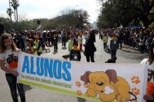 Estudantes de 11 escolas municipais desfilarão na avenida José Bonifácio