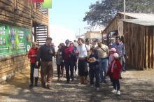 Caminhadas Turísticas no Parque Harmonia começam segunda-feira