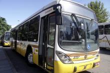 Metade da frota dos ônibus volta circular na Capital a partir desta sexta, 31