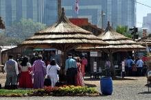 São esperadas mais de 700 mil pessoas no Parque Harmonia