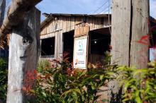 No piquete, visitante pode aprender sobre as árvores cultivadas no Viveiro Municipal
