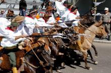 Edições passadas atraíram grande público aos desfiles na Capital