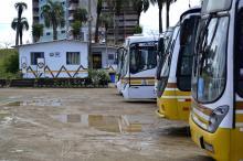 Ana Luiza Kruze quer saber o número de ônibus que podem circular