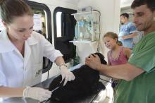 Além do atendimento clínico, mascotes receberam vermífugo e vacinas