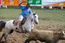 Rodeio é uma das atividades mais visitadas no Parque Harmonia
