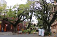 Secretaria de Serviços Urbanos iniciou ação de podas e supressões de árvores