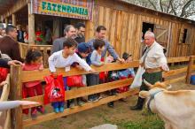 Evento tradicionalista deverá reunir mais de 350 galpões e entidades