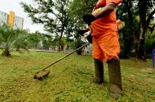 Locais receberão serviços de capina, corte de grama e manutenção de iluminação